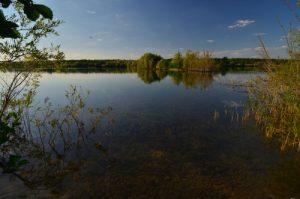 La Réserve Naturelle Régionale du Grand Voyeux