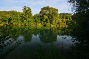 La Marne La Réserve Naturelle Régionale du Grand Voyeux
