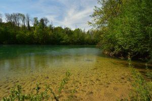 La rivière Marne<br> Réserve Naturelle Régionale du Grand-Voyeux