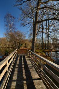 Espace Naturel Sensible du Marais de la Grande Ile