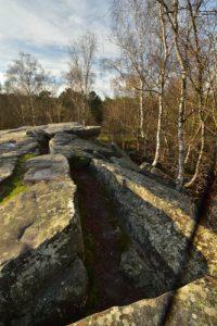 Chaos de grès<br> Espace Naturel Sensible du Bois du Roi