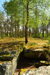 La Cave du Diable<br> Forêt domaniale de Retz