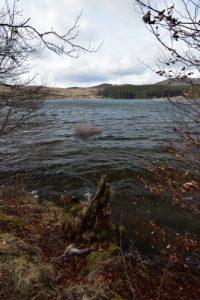 Lac de Montcineyre est un lac de barrage (Coulée de lave issue du volcan du meme nom, ayant barré le cours d'une rivière)<br> Parc Naturel Régional des Volcans d'Auvergne