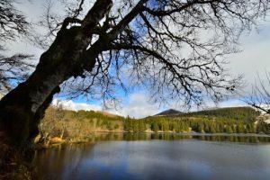 Le Lac de Guéry<br> Parc Naturel Régional des Volcans d'Auvergne