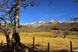 La Réserve Naturelle Nationale de la Fontaine salée<br> Parc Naturel Régional des Volcans d'Auvergne