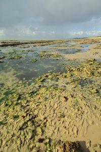 Plage Campiotel à le Chabot<br> Île de Ré