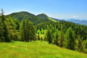 Les forts du massif de l'Authion<br> Haute vallée de la Vésubie<br> Parc Naturel National du Mercantour