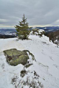 La Crête de la Réserve Frankenthal-Missheimle<br> Parc Naturel Régional des Ballons des Vosges