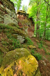 Château de Wittschloessel<br> Parc Naturel Régional des Vosges du Nord